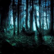 Артаганский лес